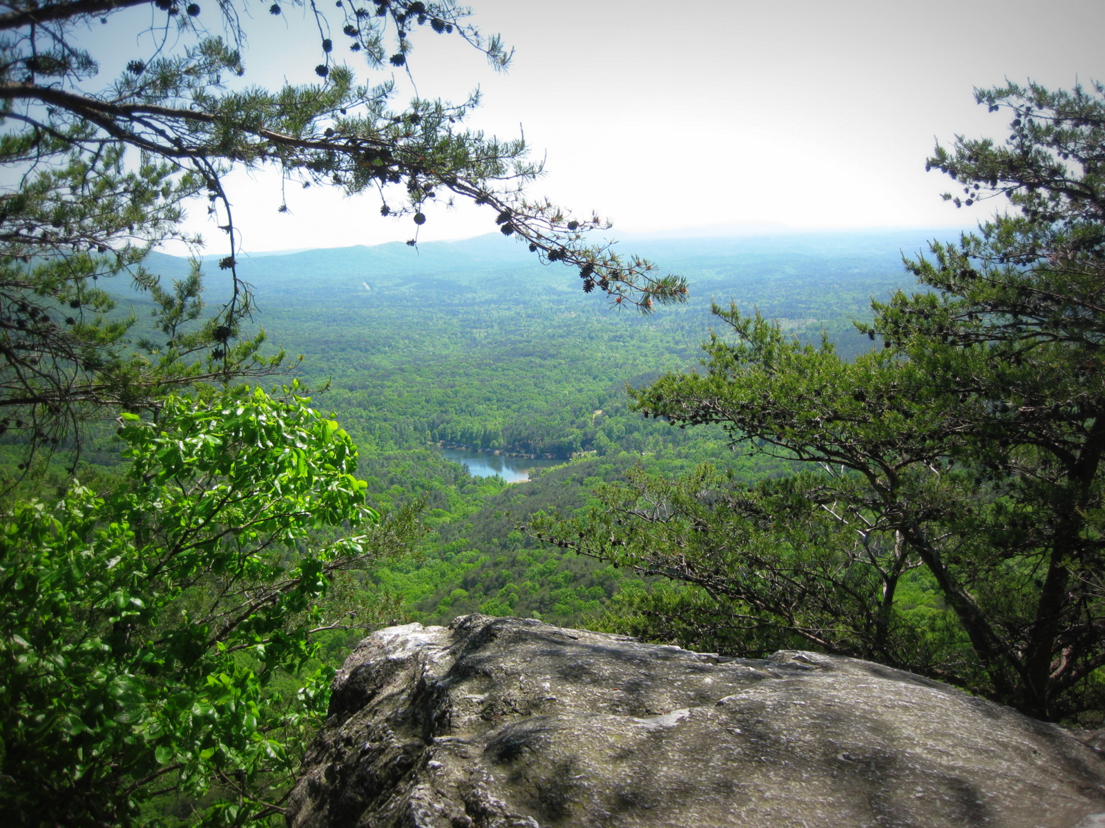 View From Top of Cheaha