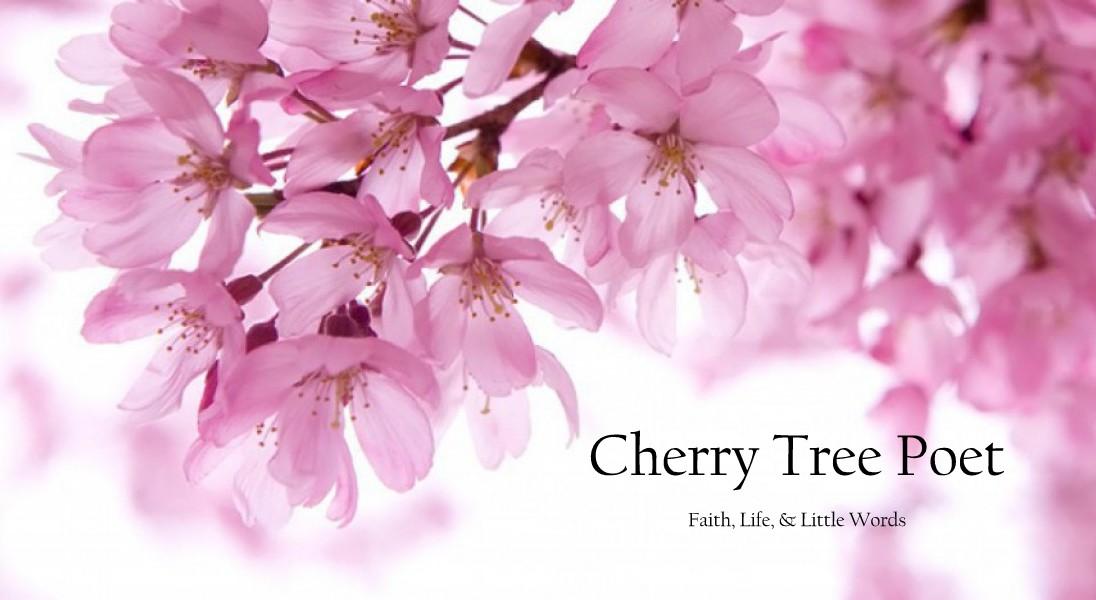 Cherry Tree Poet